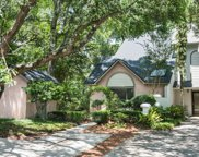 355 Spoonbill Lane, Mount Pleasant image