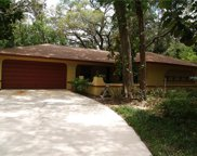 345 Cinnamon Bark Lane, Orlando image