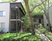 11719 Raintree Village Boulevard Unit D, Temple Terrace image