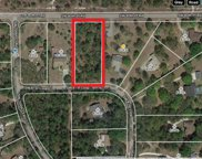 Sw 80th Place Road, Dunnellon image