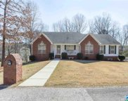 130 Wolf Dr, Odenville image