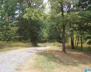 21899 Hwy 75, Oneonta image