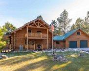 12171 Buckhorn Estates Drive, Custer image