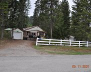 356 Shady Pines Loop, Priest Lake image