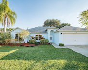 376 Rheine, Palm Bay image
