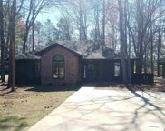 117 Myrtle Trace Dr, Conway image