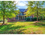 248  Old Springs Road, Fort Mill image