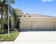 10741 Rockledge View Drive, Riverview image
