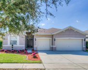 11333 Bridge Pine Drive, Riverview image