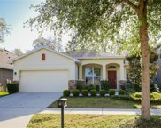 15832 Starling Water Drive, Lithia image
