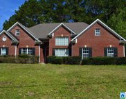 400 Shelby Forest Dr, Chelsea image