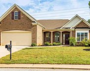 224 Reedy Springs Lane, Greenville image