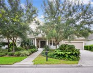 14681 Canopy Drive, Tampa image