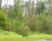 21 Red Mill Drive, Palm Coast image