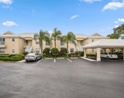 1149 Sweetwater Ln Unit 4204, Naples image