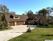 2301 Lookout Mountain Drive, Scottsboro image