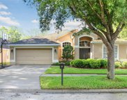6105 Whimbrelwood Drive, Lithia image