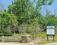 LOT 2 14915 W Black Bird Court, Mettawa image