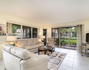 319 Brackenwood Circle, Palm Beach Gardens image