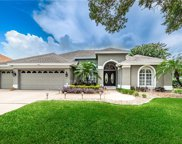 4681 Gilronan Court, Palm Harbor image