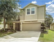 11409 Bamboo Orchid Court, Riverview image