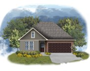 43100 Pineside Ave, Prairieville image