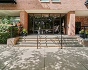 1000 East 53Rd Street Unit 323, Chicago image