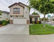 1450  Grey Bunny, Roseville image