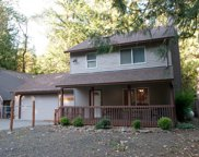65105 E LUPINE  DR, Rhododendron image