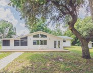 32537 Forest Drive, Deland image