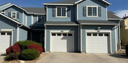 863 Red Thistle View, Colorado Springs