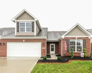 4233 Switchgrass  Way, Indianapolis image