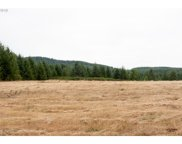 45130 McCully Mtn (E of)  RD, Lyons image