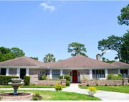 2549 Fox Squirrel Court, Apopka image