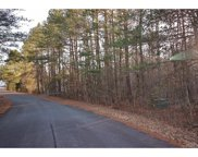 1123  Pine Knot Court, Clover image