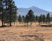 00 Forest Cove, Flagstaff image