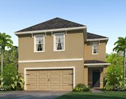 103 Lacewing Place, Valrico image
