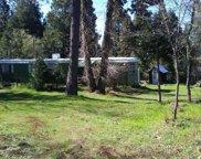 21835 Cedar Ridge Rd, Manton image