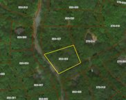 1580 Timber Pass Unit 60, Harbor Springs image