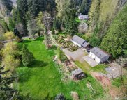 13824 196th Ave NE, Woodinville image