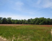 37+/-ac National Rd, Rehobeth image