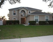 561 Yearling Cove Loop, Apopka image
