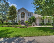 5711 Ternwater Place, Lithia image