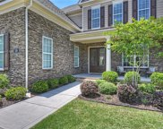 319 Newington  Court, Fort Mill image