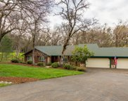 2116  American River Trail, Cool image