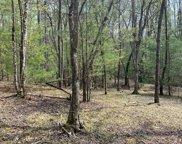 LT 8 Kingfisher Lane, Blairsville image