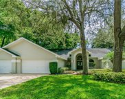 3010 Colonial Ridge Drive, Brandon image