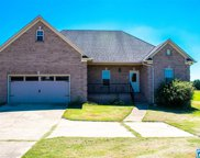 1194 Blair Farms Rd, Odenville image