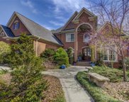 13320  Bally Bunnion Way, Davidson image