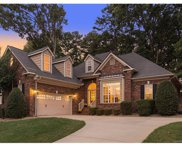 1006  Chandler Forest Court, Indian Trail image
